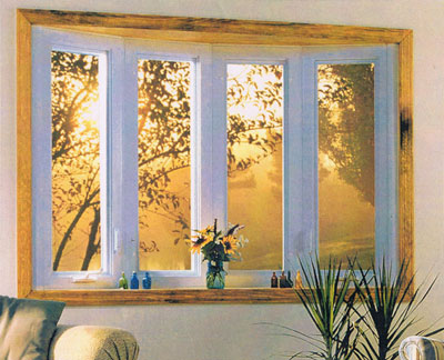 replacement windows to lower household insurance premium